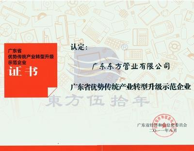广东省优势传统产业转型升级示范企业证书